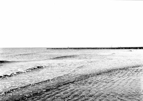 Strand 1 (Buhnen, Domburg) 1